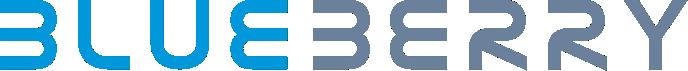 Blueberry Technologies Pvt. Limited - Sap company logo