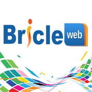 Bricleweb infotech Pvt LTD - Web Development company logo