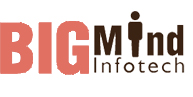 Bigmind Infotech. - Software Solutions company logo