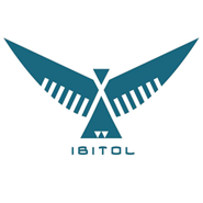 iBitol Technologies - Outsourcing company logo