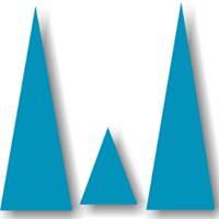 WIMS Technology - Consulting company logo