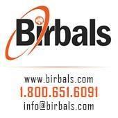 Birbals Technologies Pvt Ltd - Testing company logo