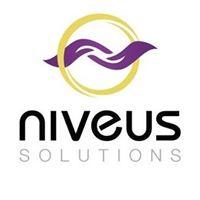 Niveus Solutions Pvt. Ltd. - Erp company logo