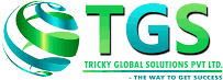 Tricky Global Solutions Pvt. Ltd. - Consulting company logo