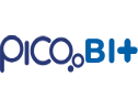 Picobit Technologies Pvt Ltd. - Software Solutions company logo
