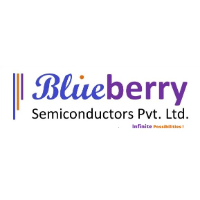Blueberry Semiconductors - Product Management company logo