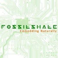 FossilShale Embedded Technologies - Product Management company logo