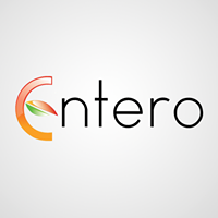 Entero Software Solutions Pvt.Ltd. - Erp company logo