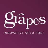 Grapes Innovative Solutions - Management company logo