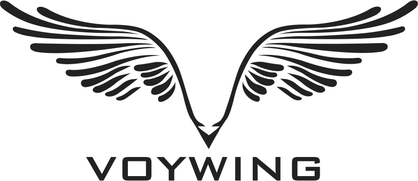 Voywing Techlabs Private Limited - Mobile App company logo