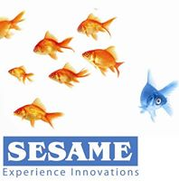 Sesame Technologies Pvt. Ltd. - Web Development company logo