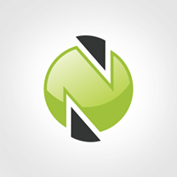 Nesote Technologies Pvt Ltd - Outsourcing company logo