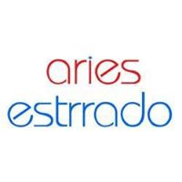 Aries Estrrado Technologies Pvt Ltd - Digital Marketing company logo
