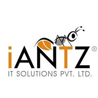 iAntz IT Solutions Pvt. Ltd. - Outsourcing company logo