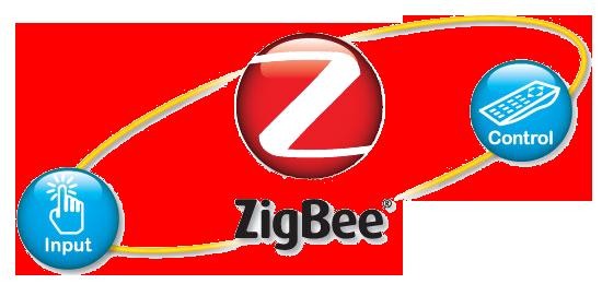 Zigbee Infotech Pvt.Ltd. - Programming company logo
