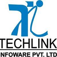 Techlink Infoware Pvt. Ltd. - Business Intelligence company logo