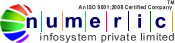 Numeric infosystem Pvt. Ltd. - Big Data company logo