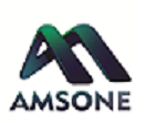 AmsOne Integration Services Private limited - Sap company logo