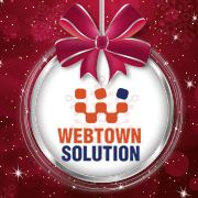 Web Town Solutions - Management company logo
