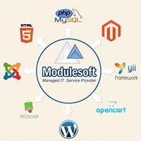 Modulesoft Solutions Private Limited - Outsourcing company logo