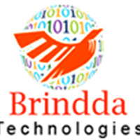 Brindda Technologies - Outsourcing company logo