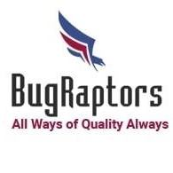 BugRaptors - Software Testing Company - Big Data company logo