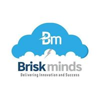 Briskminds Software Solutions Private Limited - Consulting company logo
