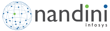 Nandini Infosys Pvt Ltd - Business Intelligence company logo