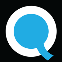 Queppelin - Data Analytics company logo