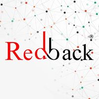 Redbackxc2xae (IT) Information Technology Solutions Private Limited - Logo Design company logo