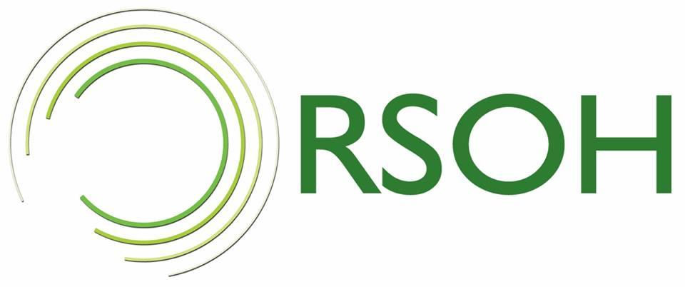 RSOH INFO SOLUTIONS PVT LTD - Search Engine Marketing company logo