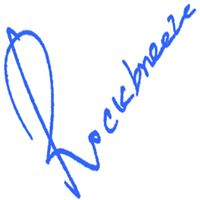 RockBreeze Technologies Pvt Ltd. - Web Development company logo