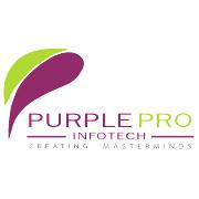PurplePro InfoTech - Automation company logo