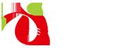 TRIKUT INFO SERVICES PVT LTD - Testing company logo