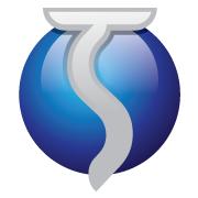 Shamla Tech Solutions - Consulting company logo