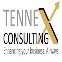 Tennex Consulting Pvt. Ltd - Data Analytics company logo