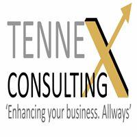 Tennex Consulting Pvt. Ltd - Data Analytics company logo