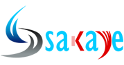 Sakaye Infotech Private Limited - Consulting company logo