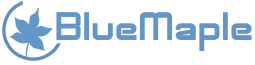 BlueMaple Technologies Pvt. Ltd. - Consulting company logo