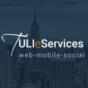 Tuli eServices - Web Development company logo