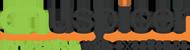 Auspicer Infotech Pvt. Ltd - Outsourcing company logo