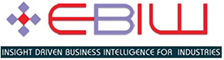 Ebiw Info Analytics Pvt. Ltd. - Data Analytics company logo