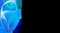 Ideal TechnoSoft Private Limited - Sap company logo