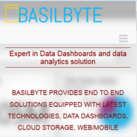 BasilByte Software Systems Pvt Ltd - Big Data company logo