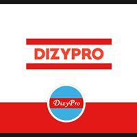 Dizypro Infotech Pvt. Ltd. - Automation company logo
