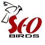 SEO Birds Marketing - Search Engine Marketing company logo