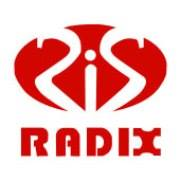 Radix Info Solutions Private Limited - Business Intelligence company logo