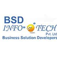 BSD Infotech - Outsourcing company logo
